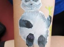 malovani-na-oblicej-facepainting-face-painting-brno-maximus3745